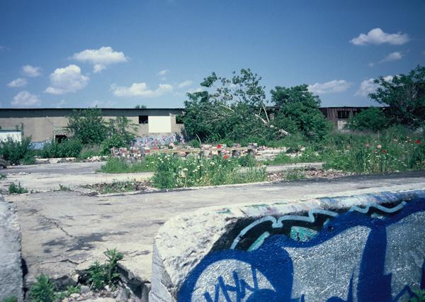 Erste Gestaltungs- und Kunstaktionen im wilden Park 1990 (eigenes Foto)