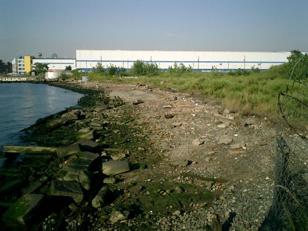 Die Uferzone 1985 (eigenes Foto)
