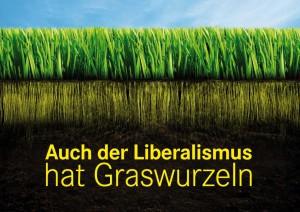 Wie ernst kann man eine liberale Graswurzelbewegung wirklich nehmen? (Bild: fdp-liberte.de)