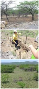 Bild oben: Ursprüngliche Landschaft Bild mitte: Neuer Bodenaufbau Bild unten: Rekultivierte Landschaft Fotos: J. Klute