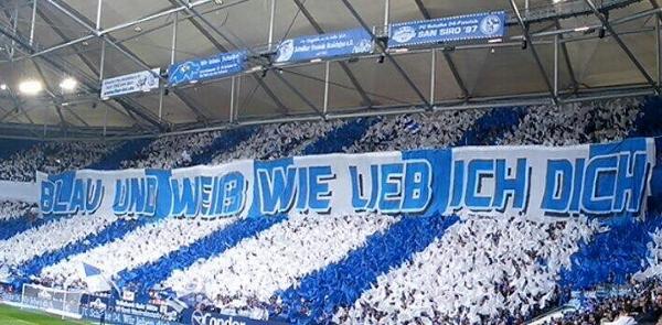Die Fans in Gelsenkirchen gaben gestern bei Spielbeginn alles. Foto: Michael Kampd