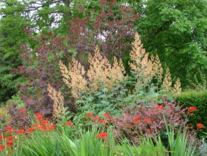 Viele bunte Farben locken in den Rombergpark. Foto: Robin Patzwaldt