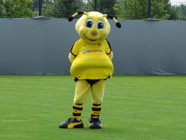Magath-hat-Recht-der-BVB-wird-wahrscheinlich-nicht-Deutscher-Meister-2019-Aber-was-soll-s-
