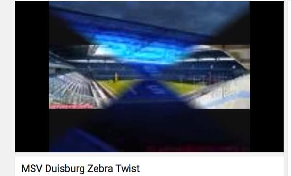 zebra_twist