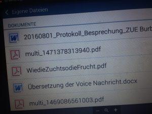 Das Protokoll der Bezierksregierung Arnsberg liegt den Ruhrbaronen vor. Foto: Jana Klein
