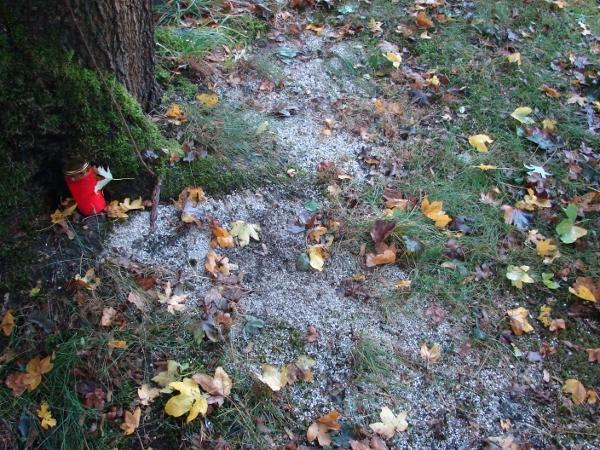 Aschestreufels in Waltrop am 20. Oktober 2016. Foto(s): Robin Patzwaldt