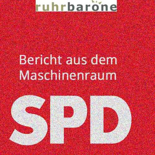 In welche Richtung geht es mit der SPD? Und was denken eigentlich die Mitglieder darüber?