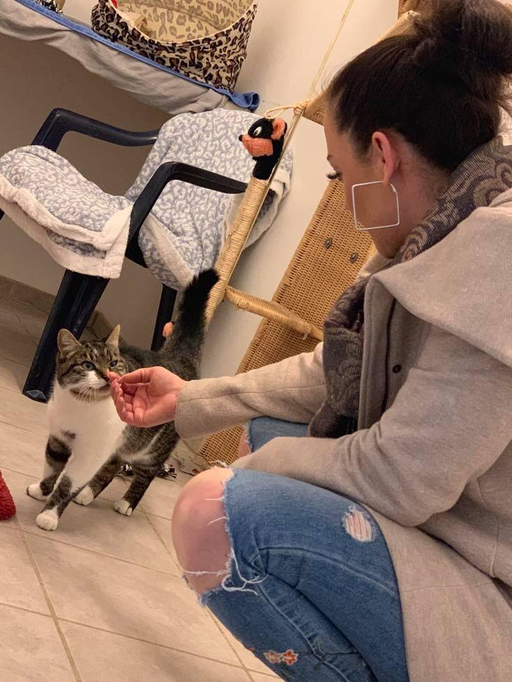 Sina Soberg (Karatezentrum Oer-Erkenschwick) betätigt sich als Katzenstreichlerin; Foto: Jörg Uretschläger