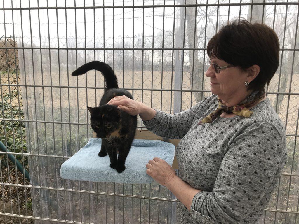 Ruth Kiel (Tierschutzverein Oer-Erkenschwick-Erkenschwick e.V.) und Katze Keks; Foto: Peter Ansmann