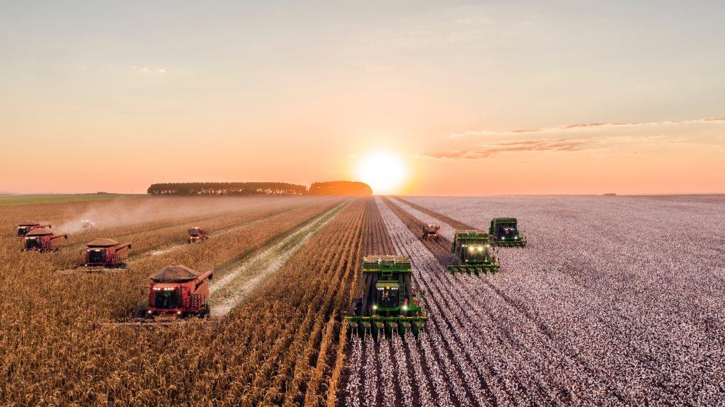 Mähdrescher bei der Ernte. Was hat Greenpeace gegen normale Landwirte?