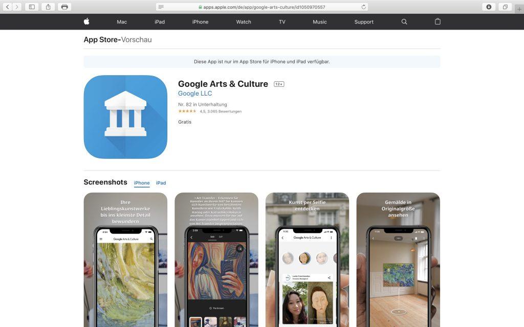 Kultur virtuell erleben: Google Arts & Culture; Screenshot artsandculture.google.com