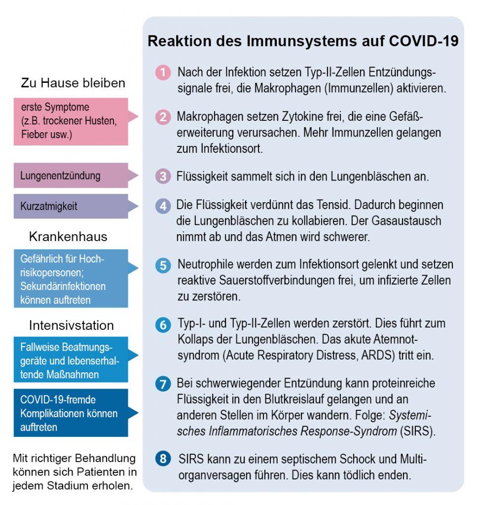 Reaktion des Immunsystems auf COVID-19