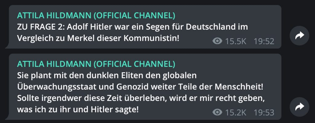 """Adolf Hitler war ein Segen für Deutschland""; Screenshot Telegram"