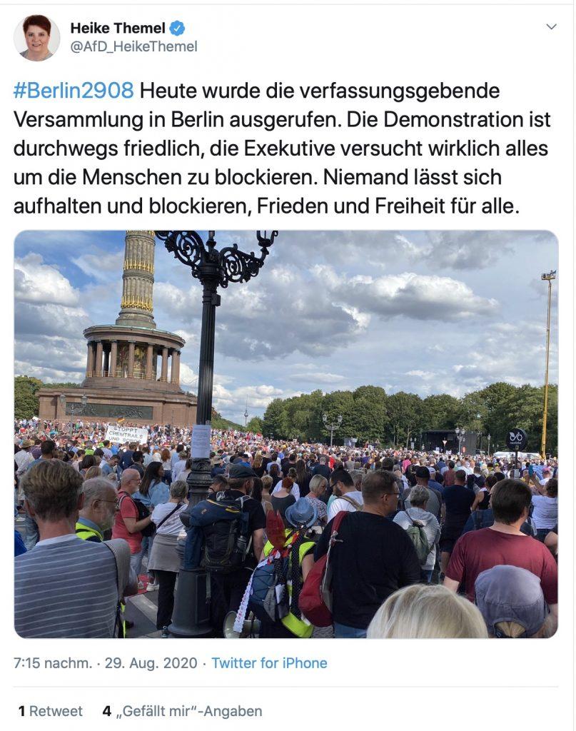 Heike Themel (AfD), fantasiert über eine neue Verfassung; Screenshot Twitter