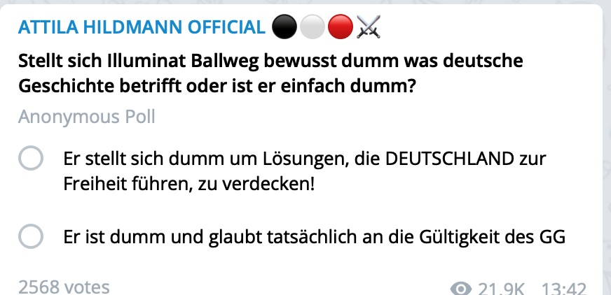 Eine typische Hildmann-Umfrage; Screenshot Telegram