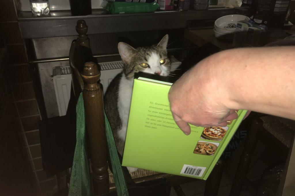 Ariel segnet ein Gericht im Kochbuch ab; Foto: Peter Ansmann